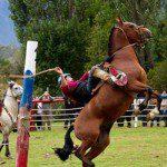 Fiestas Costumbristas en la Región de Aysén