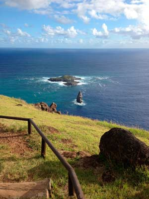 Cousteau Isla de Pascua identidadyfuturo.cl