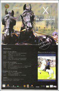 afiche concurso de carruajes lolol 2013