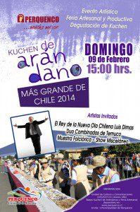 afiche-kuchen-de-arandanos perqeunco 2014
