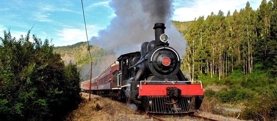 tren-el-valdiviano-2014