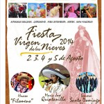 fiesta virgen de las nieves de paredones 2014