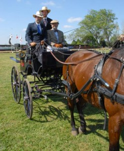 carruajes-talca-2