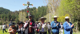 iv fiesta de la cruz del trigo en santa juana http://identidadyfuturo.cl