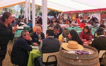 """""""Fiesta Huasa del Campo Chileno"""" en Charrúa, Cabrero"""