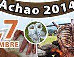 fiesta del cordero achao 2014