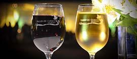 noche de las viñas en Vichuquén