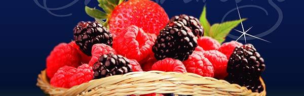 Berries Chimbarongo