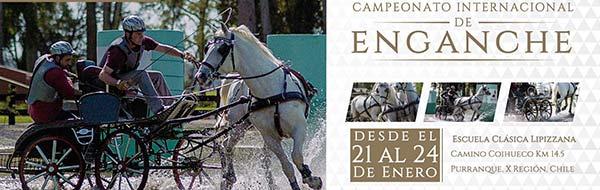 Campeonato Internacional de Enganche 2016, Escuela Clásica Lipizzana Chile haras tronador