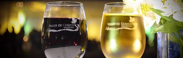 """Pueblo de Vichuquén recibirá la """"XI Noche de las Viñas"""""""