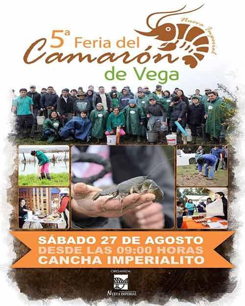 5 Fiesta Costumbrista del Camarón de Vega en Nueva Imperial