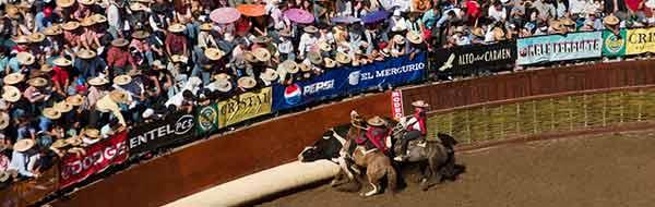rodeo-chileno-deporte-nacional-foto-de-tito-alarcon