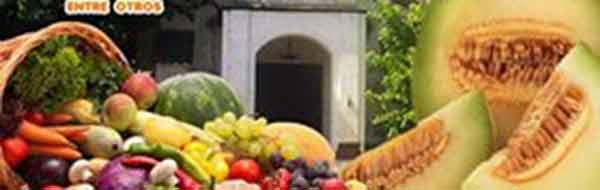 fiesta del melon y la chacra 2016 en quinta de tilcoco