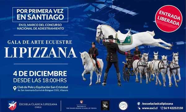 Gala de Arte Ecuestre Lipizzana en Santiago