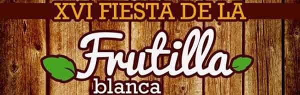 Fiesta de la Frutilla Blanca en Contulmo