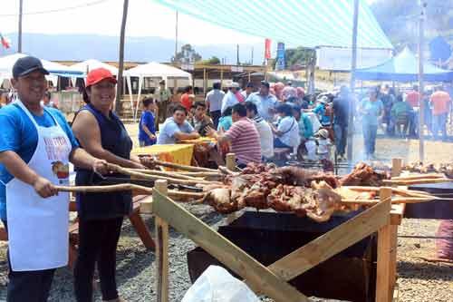Fiestas Costumbrista de Toltén 2017