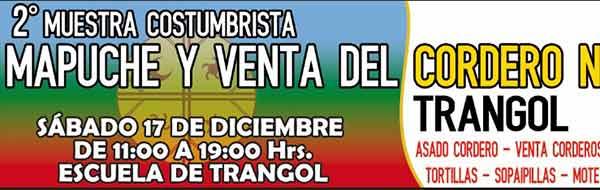 Muestra Costumbrista Mapuche y Venta del Cordero Navideño, Trangol, Victoria