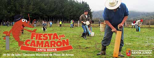 XIV Fiesta del Camarón en Santa Juana