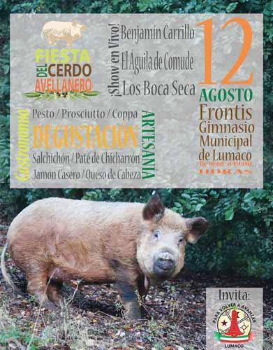 1ª Fiesta del Cerdo Avellanero en Lumaco
