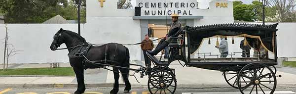Municipalidad de Casablanca inaugura coche fúnebre tirado por caballos