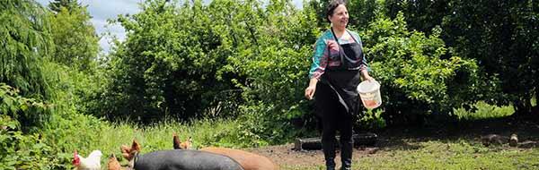 Conoce Chile a través del Turismo Rural: Bitácora verano 2018