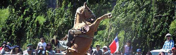 XVI Festival Internacional de Jineteadas y Folclor de Puerto Ibáñez 2018