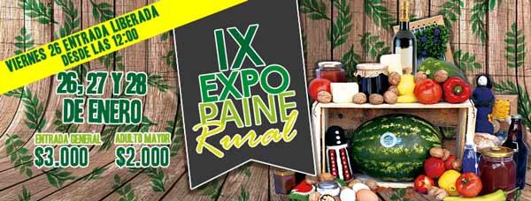 fiesta costumbrista expo paine 2018