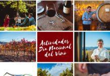dia nacional del vino en el valle de casablanca 2018