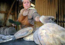 Fiesta de la Tortilla y la Longaniza en Coelemu