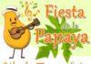 fiesta de la papaya en cobquecura