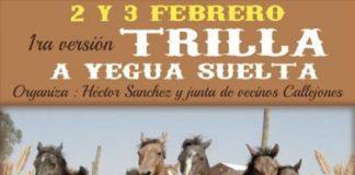 1ª Trilla a Yegua Suelta en Callejones, Nancagua