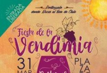 Fiesta de la Vendimia en Portezuelo 2019