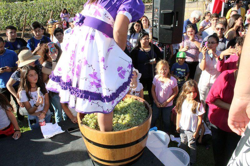 La Fiesta de la Vendimia del Valle de Aconcagua se realizará en Panquehue el sábado 06 de abril.