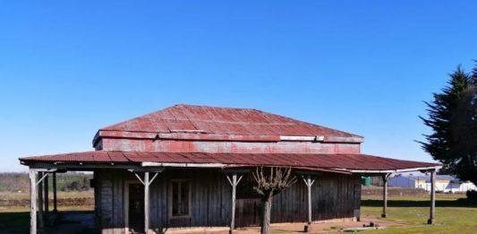 estacion de tren de selva oscura araucania