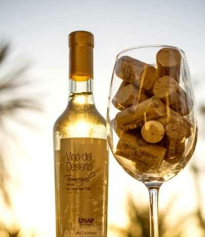 Vino-del-Desierto-Tamarugal-Seco-2018-obtiene-medalla-de-oro-en-Concurso-Internacional-Catad-Or-Wine-Awards-