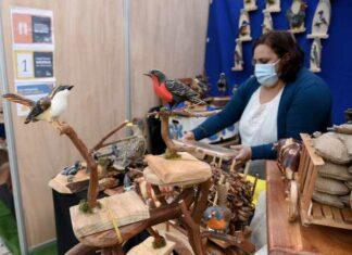Expo Sabores y Saberes Ancestrales hasta el 23 de junio en la Plaza Anibal Pinto de Temuco