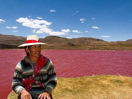 laguna roja, laguna parinacota, tarapaca, altiplano, camiña,